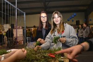Lehrlingsmesse-im-Walgau-2015-AS-(115)